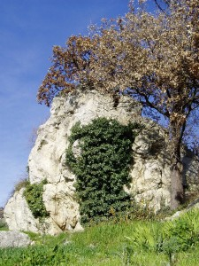 Sassoni di Montepetra