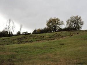 Paesaggio giro 2