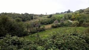 Panoramica Meleto 2
