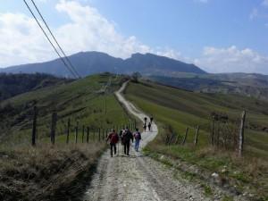Sul sentiero CAI 96; sullo sfondo Monte Pincio e Monte di Perticara