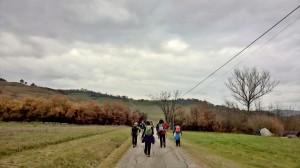 panoramica Montegelli